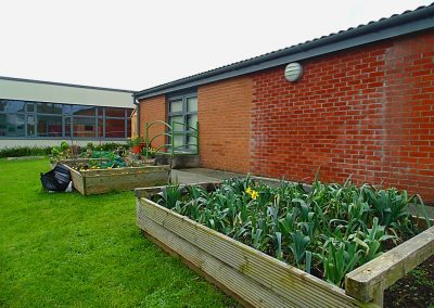 The School Garden | St Andrew's N.S. Bray